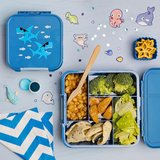 Shark - Little lunchbox 5 vakken_