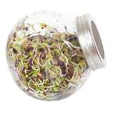 Kiempot pikante salade_