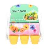 eetbare bloemen tuintje