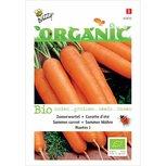 Zomerwortel nantes - biologische zaden